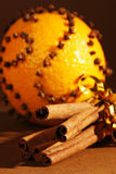 Christmas. Brunches of cinamon with orange royalty free stock images