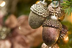 Christmas Acorns Stock Photography