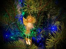 Christmas angel on branches of a fur-tree. Celebratory background. New Year`s and Christmas Royalty Free Stock Image