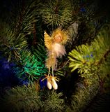 Christmas angel on branches of a fur-tree. Celebratory background. New Year`s and Christmas Stock Image
