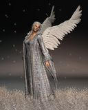 Christmas Angel on a Winter Night Royalty Free Stock Image