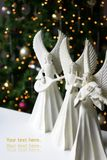 Christmas Angels. Three musical angels in front of a christmas tree royalty free stock photo
