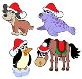 Christmas animals collection - Stock Photography
