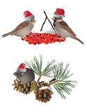 Christmas animals Stock Image