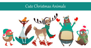 Christmas Animals Wearing Warm Winter Clothes. Cute Merry Christmas Animal Set: Birds, Bear, Deer, Cat. Colorful Animals Wearing Warm Winter Clothes Like Gloves Royalty Free Stock Images