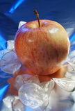 Christmas apple Royalty Free Stock Photo