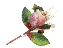 Christmas apple decoration Royalty Free Stock Image