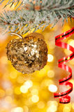 Christmas apple on fir tree branch Royalty Free Stock Photography