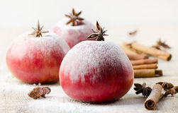 Christmas  apples and spices Stock Image