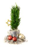 Christmas arrangement Stock Photo