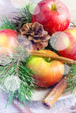 Christmas arrangement with apples, spruce branches and spices. Stock Images