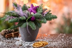 Christmas arrangement with Norwegian pine Nobilis and decorated with Christmas decor in a ceramic Cup. Garland bokeh on stock photography