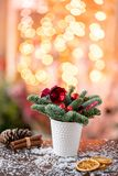 Christmas arrangement with Norwegian pine Nobilis and decorated with Christmas decor in a coffee Cup. Garland bokeh on stock image