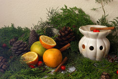 Christmas Arrangement. The smell of the holiday - cinnamon, oranges, pine Royalty Free Stock Photos