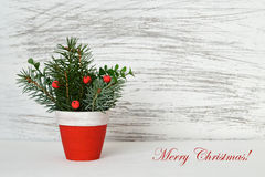 Christmas arrangement on white grunge background Royalty Free Stock Images