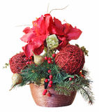 Christmas arrangements Stock Images