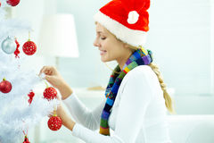 Christmas arrangements Stock Photography