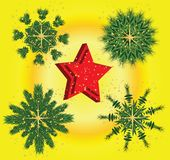 Christmas asterisks from a fur-tree Royalty Free Stock Photo