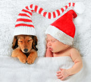 Christmas baby and Christmas puppy Royalty Free Stock Image