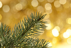 Christmas background. A christmas background with christmastree Royalty Free Stock Image
