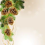 Christmas background. Light Christmas background with vitality cones and fir tree Stock Image