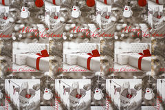 Christmas background. A black and white christmas background with a splash of colour Royalty Free Stock Photography