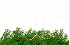 Christmas background with balls and branches. Stock Images