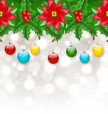Christmas background with balls, holly berry, pine and poinsetti Royalty Free Stock Image