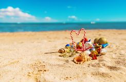 Christmas background on the beach with shells on the sand stock photography