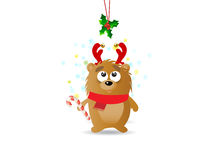 Christmas background. With bear and reindeer horns Stock Photography