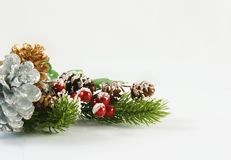 Christmas background with berries and pine cones royalty free stock images