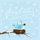Christmas background with blue bird and snowflakes Stock Photography