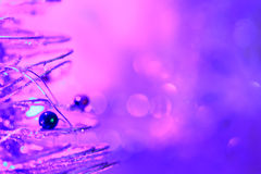 Christmas background of bokeh lights Stock Image