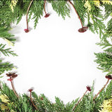 Christmas background border with evergreen fir tree Royalty Free Stock Images
