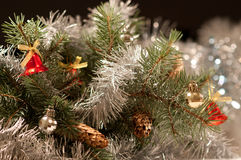 Christmas background with a branch of blue spruce Stock Photos