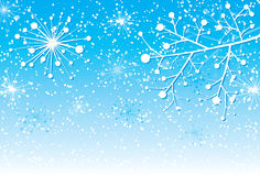 Christmas background with a branch, vector Stock Images