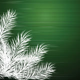 Christmas background with branches of a Christmas tree. Vector illustration Stock Photography