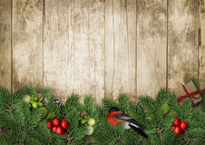 Christmas background with bullfinch and berry on wooden backgrou Stock Photos