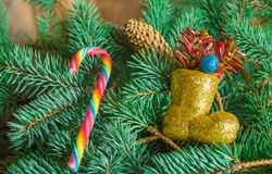 Christmas background, candy stick and boots lying on spruce branches Stock Photo