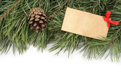 Christmas background. Christmas background. Christmas tree branch and bumps on a white background Stock Image