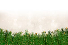 Christmas background with christmas tree branches. Royalty Free Stock Images