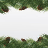 Christmas background with christmas tree. Vector frame with gree Stock Images