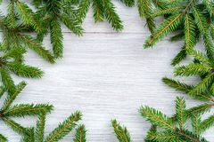 Christmas background - circle frame made of fir branches stock image