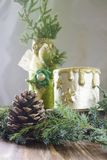 Christmas background with cone, branch of the Christmas tree Stock Images