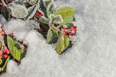 Christmas background with copy space Royalty Free Stock Photos