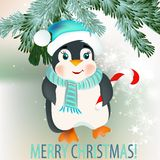 Christmas background with cute little penguin. Cute vector card with Christmas tree branches and penguin for design Royalty Free Stock Images