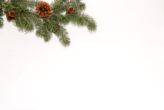 Christmas background decoration with white wall. And pine cones Stock Photography