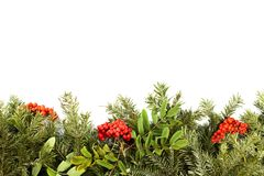Christmas background with decorations, holly berry, cones isolat Royalty Free Stock Photography