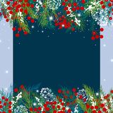 Christmas background design of pine leaves and berry with snow Royalty Free Stock Images