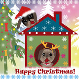 Christmas background with dogs Stock Photography